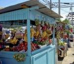 Lavorare-nei-Caraibi-a-Trinidad-Tobago